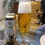 Bitburger Premium Pils from Bitburger